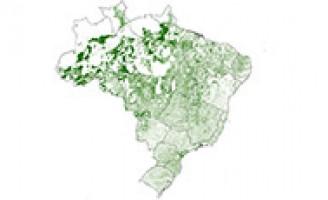 Proprietários rurais ganham consciência de valorizar a preservação ambiental