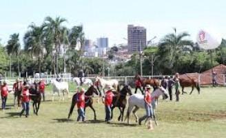 Últimos preparativos para a 55ª edição da feira agropecuária de Uberlândia