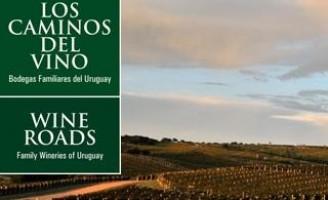 Vinícolas do Uruguai se juntas para promover eventos no Brasil