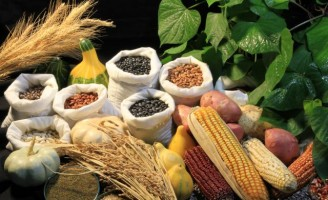 Um recorde para as vendas do agronegócio no primeiro semestre do ano