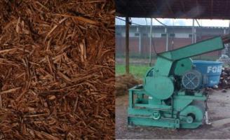 Bem trabalhados os resíduos do coqueiro se transformam em um excelente adubo orgânico