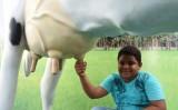 Estande de feirinha da agricultura familiar chama atenção dos visitantes da Exposição de Animais