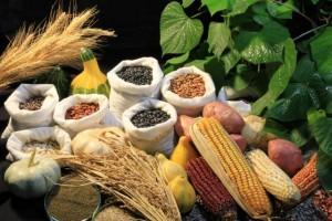 grãos variados