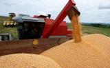 Brasil pode ter uma colheita recorde para a próxima safra