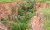 Solos com erosão provocam perda de produtividade da superfície terrestre global