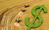 Balanço de financiamento agropecuário constata crescimento nas contratações de crédito rural
