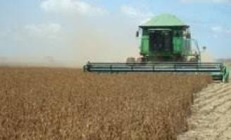 Previsão de recorde na produção de grãos na safra 2018/2019