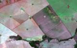 Redes meteorológicas vão avisar aos produtores quando houver risco de doenças nas lavouras