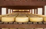 Consultas públicas para regulamentação da produção de queijo minas meia cura e outros queijos