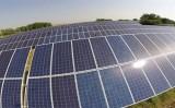 Caatinga pode se tornar solução produtiva diante da mudança do clima