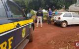 Mais de 6 toneladas de agrotóxicos ilegais foram apreendidas no Paraná