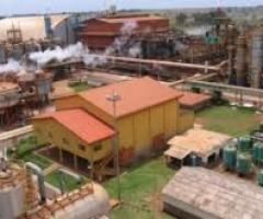 Usina alagoana ganha referência internacional de produção sustentável de açúcar e etanol