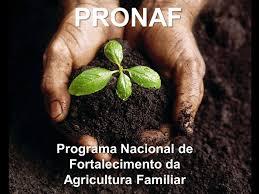 PRONAF 1