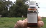 A homeopatia aplicada no rebanho ajuda a reduzir despesas com medicamentos