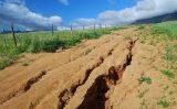 Pesquisadores fazem um mapa das áreas com risco de erosão em Alagoas