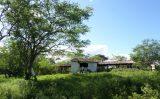 Curais do Haras Camuana