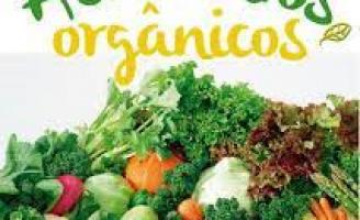 Consumidor aumenta procura por produtos orgânicos