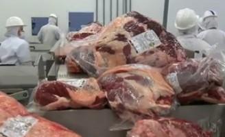 Venda de carne brasileira foi sucesso no mercado internacional