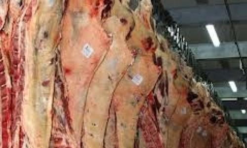 """<h2><a href=""""https://nordesterural.com.br/brasil-supera-as-dificuldades-para-exportar-carne-para-a-arabia-saudita/"""">Brasil supera as dificuldades para exportar carne para a Arábia Saudita</a></h2> O embargo à carne brasileira já durava mais de dois anos e aconteceu por causa do caso atípico de Encefalopatia Espongiforme Bovina (EEB) registrado no Brasil em dezembro de 2012."""
