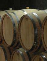 Brasil vai ser sede do Congresso Mundial do Vinho