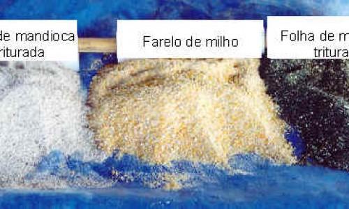 """<h2><a href=""""https://nordesterural.com.br/a-racao-para-alimentar-a-galinha-caipira-pode-ser-enriquecida-com-uso-da-mandioca/"""">A ração para alimentar a galinha caipira pode ser enriquecida com uso da mandioca</a></h2> Foto: Embrapa A criação de frangos e galinhas caipiras é uma atividade produtiva que oferece oportunidade de renda aos pequenos produtores rurais. No entanto, o criador enfrenta problemas no que"""