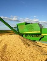 Cresce a participação do agronegócio na balança comercial brasileira