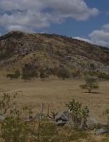 Cuidados com o manejo das terras no semiárido pode evitar os riscos de desertificação