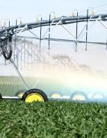 Apesar da crise, tudo aponta para um crescimento do agronegócio brasileiro