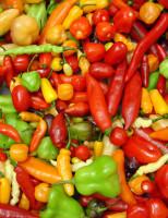 Embrapa oferece sementes de pimenta para produtores que desejem produzir e vender