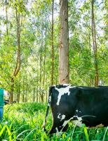 Capacitação tecnológica para agricultores tem 30 cursos gratuitos