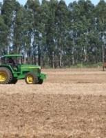 Clima ameaça a safra de grãos do Brasil que pode ser menor