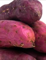 Brasil quer mais incentivo para produção e consumo da batata doce