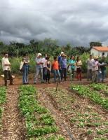 Produtos da agricultura familiar em 14 estados tem preços garantidos e bônus de até 70%