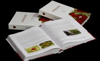 Um livro ensina tudo sobre a produção de morango