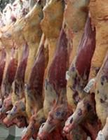 País bate recorde de exportação de carne bovina in natura