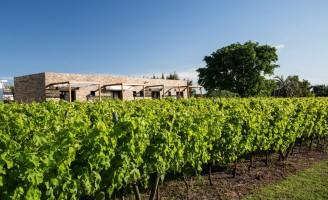 Indicação de passeios com degustação de vinhos e boa hospedagem nas vinícolas uruguaias