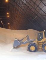 A Índia é o maior produtor de açúcar do mundo