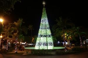 luzes gravatá - árvore na praça