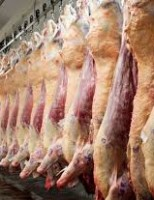 Novo mercado para a exportação da carne bovina brasileira