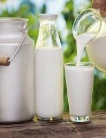 2020 tem previsão de crescimento moderado para a pecuária de leiteira do Brasil