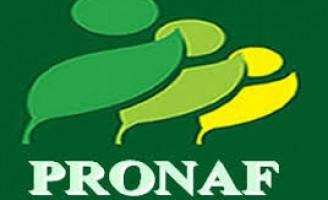 Os produtos da agricultura familiar financiados pelo Pronaf e que ganham descontos este mês
