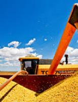 Nordestinos se destacam no número de inscritos no Desafio de Máxima Produtividade de Soja