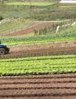 Governo desburocratiza o acesso ao crédito rural
