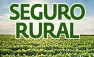Como o produtor rural pode se cadastrar para ter acesso ao seguro rural