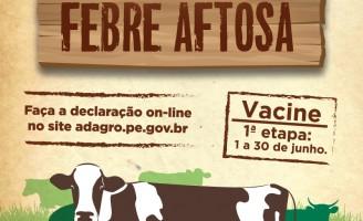 Alerta aos produtores rurais: está terminando o prazo da campanha de vacinação contra febre