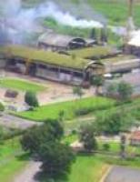 Usina pernambucana inicia moagem apelando para voto de confiança no Poder Legislativo