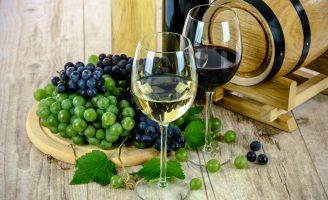 Vinhos podem ser consumidos perfeitamente em regiões quentes
