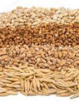 Como substituir o milho para baratear os custos da ração para suínos e aves