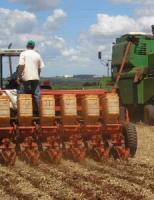 Produtores iniciam a semeadura do algodão para a safra 2020/2021