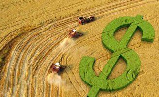 As vendas do agronegócio brasileiro cresceram em novembro